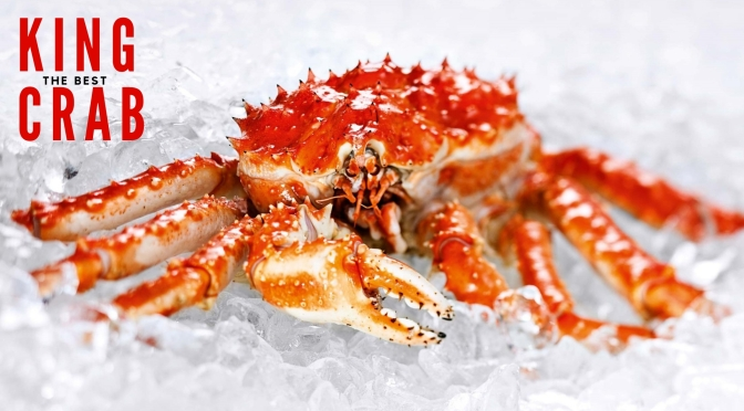 The best of #KingCrab #NoCriticsJustCuisine